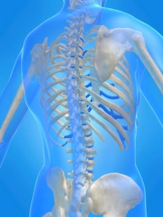 Photo: Osteoporosis Australia